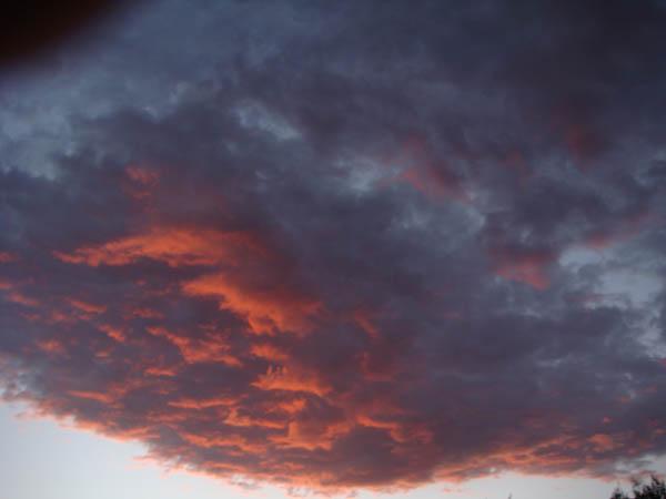 Sky as 2010 Harvest Began